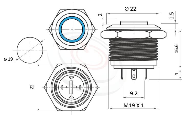 MP19-4MH Series概略尺寸圖,標示短款開關LED帶燈照光金屬開關,雙向極性,LED正反可接的外型長度,短款,高頭,更靈活彈性的燈色燈壓選擇防水/防塵/防化學腐蝕,可對應GQ19,LAS1-BGQ,MPB19,MPS19,MW19,HK19B,HKYB19B,LAS1-AGQ,LAS1GQ,pbm19,cmp,bpb,mp19n,ft-19,lb19b,qn19,J19,EJ19平面,材質-不鏽鋼,黃銅鍍鎳,鋁合金